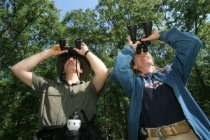 birdwatching-binoculars-buying-guide