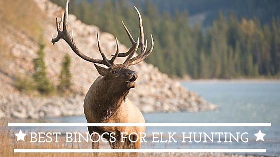 elk and deeur hunting