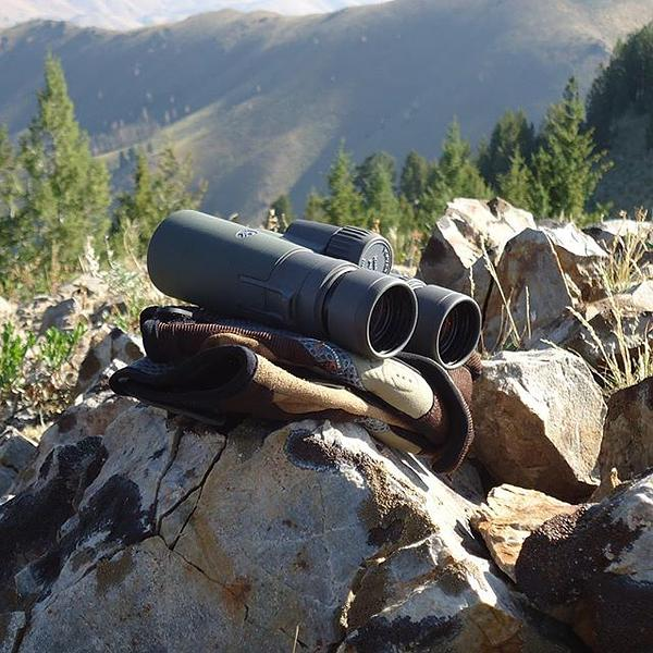 vortex razor hd best binoculars under 1000 dollars