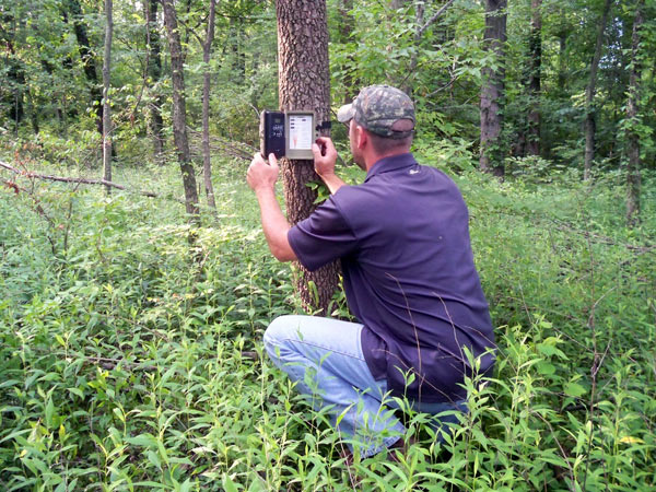 Trailcam Hanging Tips