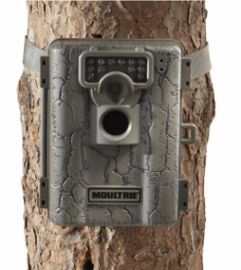 moultrie a5 game camera reviews & test