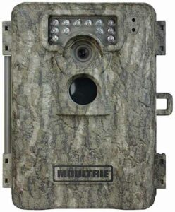 moultriea8review-large