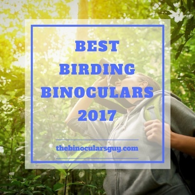 searching-for-the-top-rated-birdwatching-binoculars