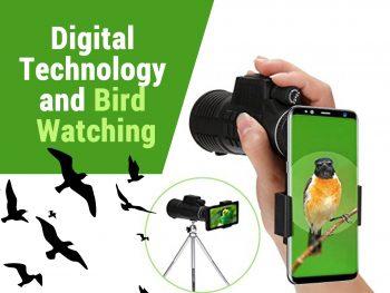 Digital Technology Vs Bird Watching | How Birding Has Changed