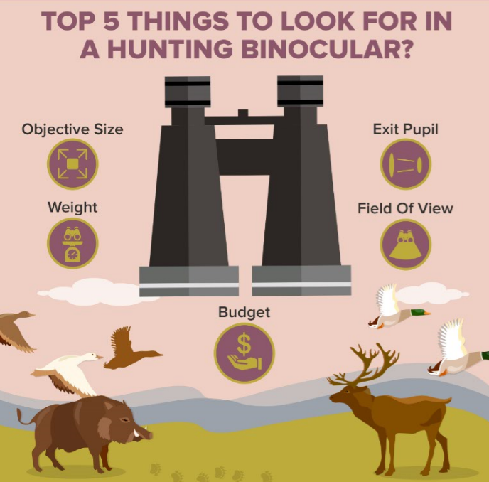 5 things to look for when buying hunting binoculars